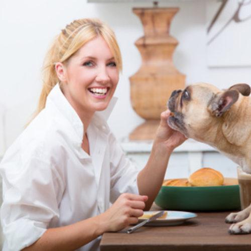 Hundehaltung in einer Mietwohnung
