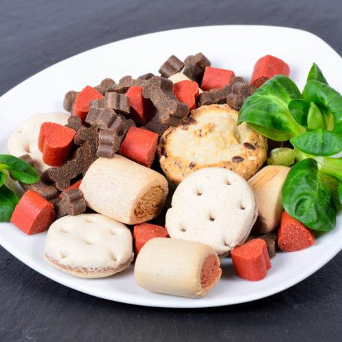 Hundeernährung – von Trockenfutter und Dosenfutter über BARF bis vegetarisch
