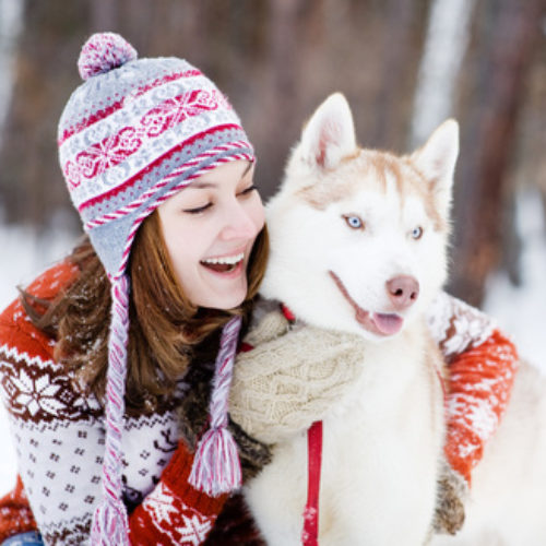 Winterurlaub mit dem Hund