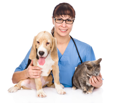 veterinarian hugging cat and dog. isolated on white background