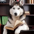 Hund beim Studium