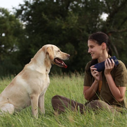 Hundesport – Dummytraining