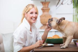 Hundehaltung Mietwohnung